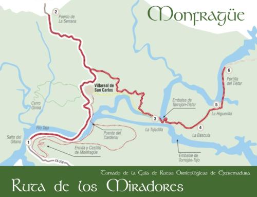 Monfragüe Viewpoints